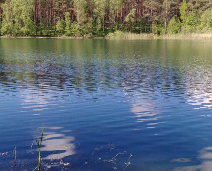 Woda w kąpielisku Ośrodek Stawiska nad jeziorem Zakrzewie jest przydatna do kąpieli